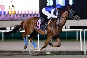 Shoqeet (No. 8) zooms home under jockey Derreck David's vigorous riding to take Race 3 at Kranji last night.