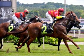 King Of War (No. 2) winning at his sixth start with jockey William Pike astride in Race 2 at Kranji yesterday.