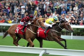 Werther (No. 1) gets up to beat Time Warp by a neck in the Group 2 BOCHK Jockey ClubCup at Sha Tin on Sunday.