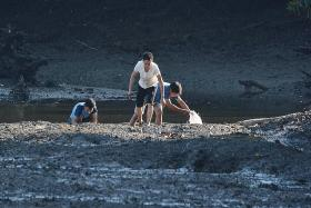 3 men spotted digging for shellfish at Sungei Buloh