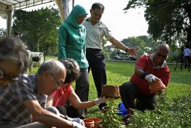 Istana open to volunteer gardeners for three days a month