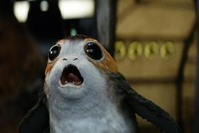 Adorable or deplorable? Porgs stir debate in Star Wars galaxy