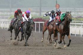 Sebas (in green), fending off rivals to win the $80,000 Kranji Stakes C race over 1,100m on the Polytrack in Race 9 on Feb 14 last year.