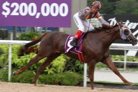 Speedy Dragon, with jockey A'Isisuhairi Kasim astride, makes it a one-horse race in the $200,000 Group 3 New Year Cup over the Polytrack 1,200m in Race 9 at Kranji yesterday.