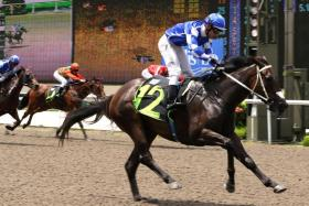The Mark Walker-trained Bringer Of War (with jockey Derreck David astride) winning with ease on June 11 last year.