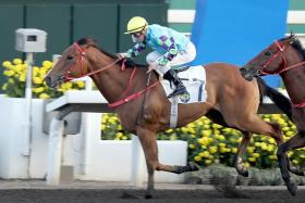 Jockey Zac Purton steering Pick Number One (No. 7) to win the Class 3 Oak Maritime Handicap at Sha Tin on Sunday.