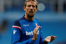 Antonio Conte has turned his attention to Stoke's Peter Crouch (above), as original target Andy Carroll is too injury-prone.