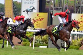 Jockey Olivier Placais standing up to celebrate after winning on Super Fortune at Kranji on Nov 6.