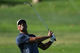 Tiger Woods is aiming to for the US Masters in April.