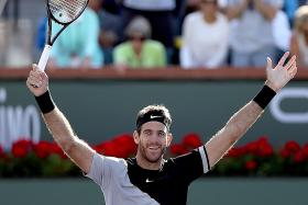 Del Potro's back-to-back titles