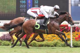 Imperium (No. 5) has a win and two thirds from as many starts and looks good in Race 5 at Kranji on Sunday.