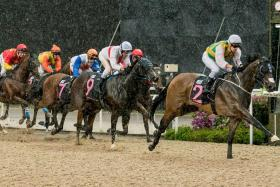 Distinctive Darci (No. 2) exploding away to take the $125,000 Kranji Stakes A event over the Polytrack 1,000m at Kranji on Sunday and is now targeted for the $500,000 Group 2 Merlion Trophy on April 27.