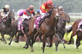 Be Bee victorious in the first leg of the Singapore 3YO Challenge on March 30.