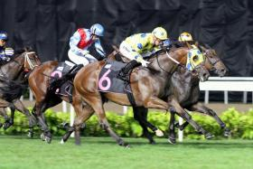 Mr Clint (No. 6) winning his last start with a powerful finish and has trained on for Saturday's $1 million Group 1 Singapore Guineas.