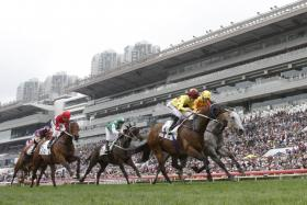 Southern Legend (No. 4) winning a race in Hong Kong and is probably the best of the three overseas contenders for Saturday's $1.5 million Group 1 Kranji Mile.