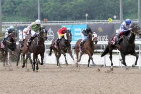 Jupiter Gold (right) clearing away under Olivier Placais' hard-riding to beat Distinctive Darci (left) in the $125,000 Kranji Stakes A event over the Polytrack on Sunday.