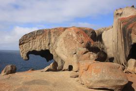 Kick back and walk on the wild side on Kangaroo Island