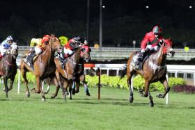 Super Fortune has a good chance to win today's $125,000 Kranji Stakes A race over 1,200m.