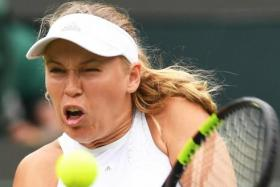 Caroline Wozniacki (above) was distracted by flying ants during her shock loss to Ekaterina Makarova.
