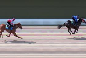Bold Thruster on the way to beating his rivals by 11½ lengths in 59.29sec.