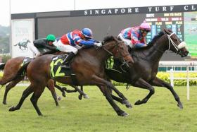 Streetwise fending off Siam Vipasiri (No. 12) on July 1. The duo will renew rivalry in the Group 2 Aushorse Golden Horseshoe over 1,200m on Friday.