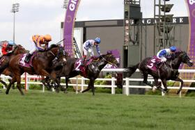 Elite Invincible (No. 3) staving off Kingsman (No. 4) and Jupiter Gold (No. 2) in the $1 million Group 1 Giovanni Racing Charity Bowl, second leg of the Singapore Four-Year-Old Challenge - over 1,600m at Kranji on June 24.