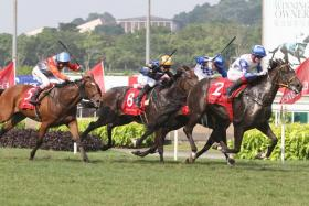 Jupiter Gold (No. 2) capturing the $1.15 million Group 1 Emirates Singapore Derby in Race 8 at Kranji yesterday.