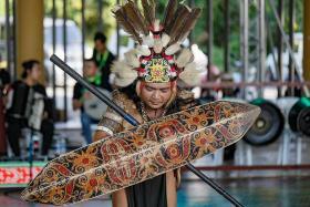 Sarawak's Rainforest World Music Festival a cultural treat