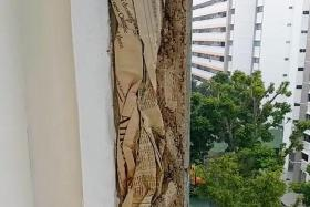 Contractor under probe by HDB for stuffing papers into walls of flat