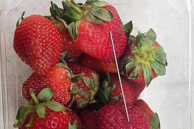Aussie cops still trying to figure out who's putting needles in fruit