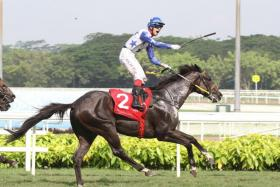 Raffles Cup looks a thriller