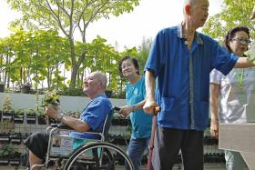 Nursing home's therapeutic garden a boon for residents
