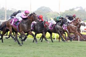 Debt Collector (No. 1) sprinting clear to score an easy win in the $1 million Group 1 Queen Elizabeth II Cup over 1,800m in Race 9 at Kranji yesterday.