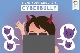 Humour: Am I a cyberbully?