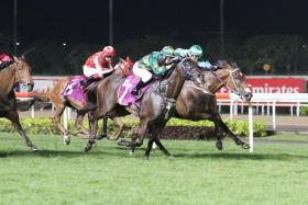 Circuit Land (No. 7) winning the the Group 2 Chairman's Trophy earlier this year.