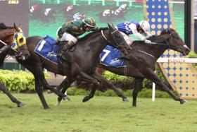 Jockey Benny Woodworth steering the Mark Walker-trained Elite Invincible to victory in the $1.35m Dester Singapore Gold Cup over 2,000m yesterday.