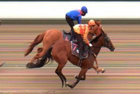 Melting Point with S John (in blue) astride just beaten by Amazing Eclipse in Tuesday's Trial 2.