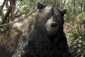 Mowgli's Andy Serkis: Portraying bear was more difficult than ape