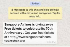 Singapore Airlines warns customers of phishing scam