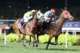 Front-runner O'What A Feeling (inside) staving off Mr Dujardin by a head in the $45,000 Class 4 Non Premier event over 1,800m on the long course in Race 3 at Kranji on March 2 last year.