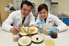NTU scientists turn durian seeds into food stabilisers and probiotics