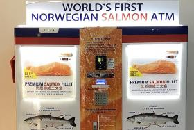 World's first salmon ATM