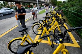 ofo's bike-sharing licence suspended over failure to meet regulations