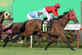 Stay The Course rushing home strongly to win over 1,400m last start on Feb 22. He will be better over 1,600m on Sunday.