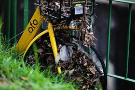 LTA cancels ofo's operating licence