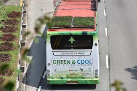 Buses with green roofs hit the roads
