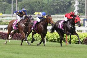 Bold Thruster (in red) giving more to capture the $175.000 Group 3 Rocket Man Sprint yesterday.