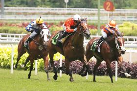 Lizaz (centre) scoring his only win in March 2015 but he is back in form.