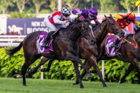 South Australian champion apprentice jockey Raquel Clark steering $398 rank outsider What's New (No. 16) to victory in the $175,000 Group 3 Silver Bowl at Kranji yesterday.