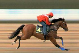 Win Easy takes Trial 5 easily at Kranji yesterday morning.